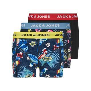 Juego de 3 calzoncillos para niños Jack & Jones Flower Bird